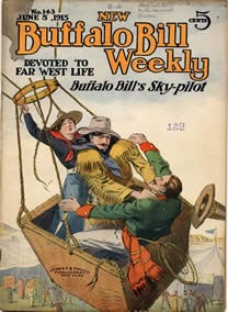 Dime Novel Display